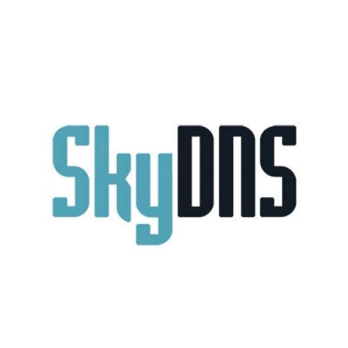 SkyDNS Zapret ISP. Сервер фильтрации по URL ресурсов из реестра запрещенных ресурсов eais.rkn.gov.ru