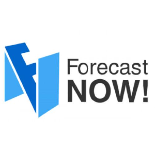 Программа оптимизации складских запасов Forecast NOW!