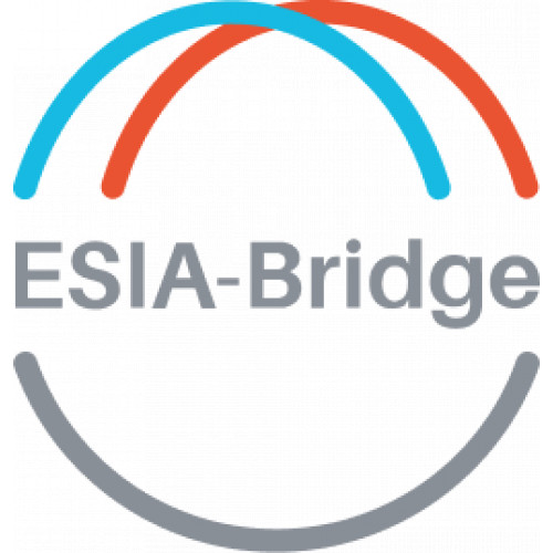 ESIA-Bridge
