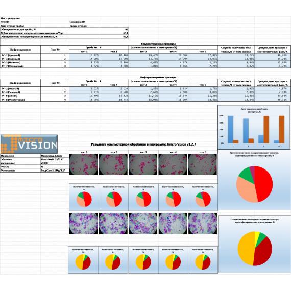 Автоматизированная методика анализа и интерпретация результатов трассерных исследований многостадийного гидравлического разрыва пласта