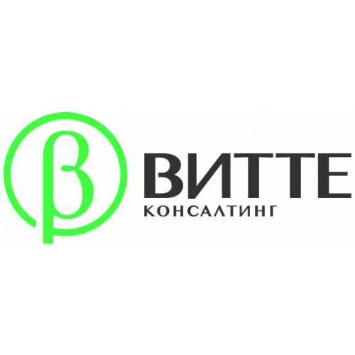 Витте Консалтинг - цифровые платформы