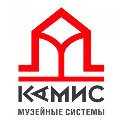 КАМИС - цифровые платформы