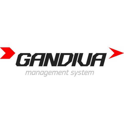 GANDIVA - система для управления персоналом бэк-офиса - цифровые платформы