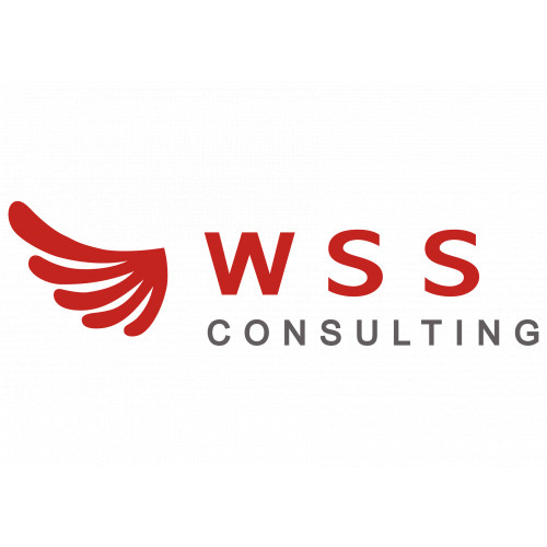 WSS-Consulting - цифровые платформы