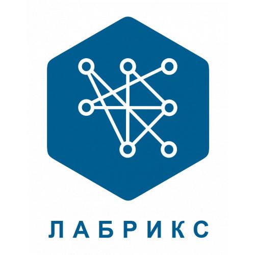 ЛАБРИКС - цифровые платформы