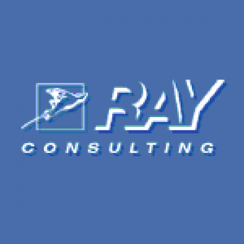 RayCon - цифровые платформы