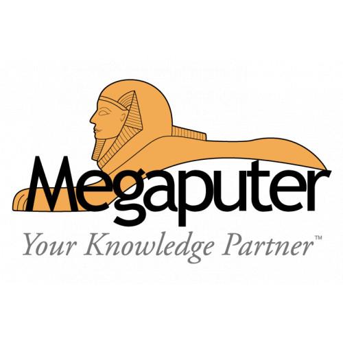Мегапьютер - цифровые платформы