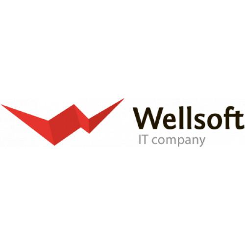 Wellsoft - цифровые платформы