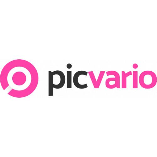ПИКВАРИО - цифровые платформы