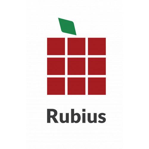 Rubius - цифровые платформы