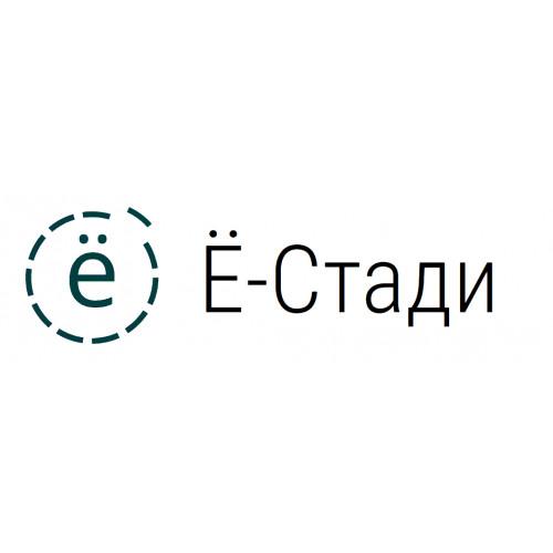 Ё-Стади - система дистанционного обучения - цифровые платформы